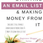 A Beginner's Guide to Starting An Email List From Scratch & How to Making Money From Your Email List (without feeling like a dirty rotten spammer-face). Complete with two email marketing sales funnel, welcome series, email ideas, freebie ideas and so much more. Save or Click through.